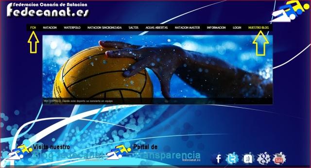 imagen de la web de la federación canaria de natación